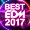 91. BEST EDM 2017 - Various Artists