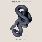 Download Shinedown - How Did You Love (Acoustic)