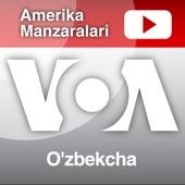 Amerika Manzaralari - Voice of America - VOA