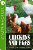 Crafts & Hobbies : Chickens and Eggs