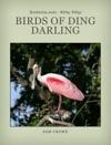 Birds Of Ding Darling National Wildlife Refuge
