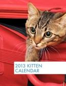 2013 Kitten Calendar