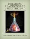 Chemistry Reaction Lab
