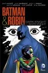 Batman And Robin Dark Knight Vs White Knight