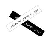 ./account_murder_case