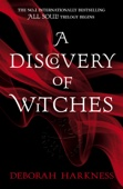 Deborah Harkness - A Discovery of Witches artwork
