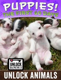 Unlock Animals - Puppies! - Max Haynes Book