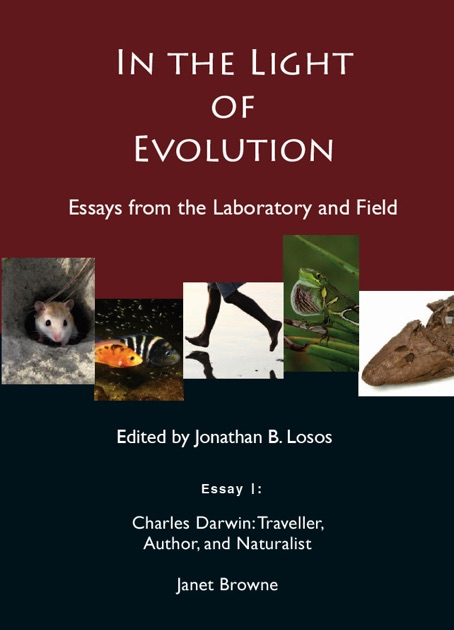 evolution essay prompts 100% free papers on character evolution essays sample topics, paragraph introduction help, research & more class 1-12, high school & college - - page 2.