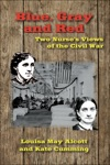 Blue Gray And Red Two Nurses Views Of The Civil War