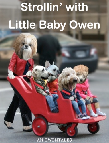 Strollin with Little Baby Owen an ASL  English Story