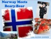 Norway Meets Beary-Bear