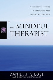 THE MINDFUL THERAPIST: A CLINICIANS GUIDE TO MINDSIGHT AND NEURAL INTEGRATION