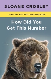 How Did You Get This Number - Sloane Crosley Book
