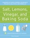 Salt Lemons Vinegar And Baking Soda
