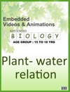 Plant - Water Relation