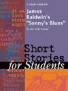 A Study Guide For James Baldwins Sonnys Blues