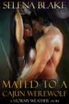 Mated To A Cajun Werewolf Stormy Weather Book Four