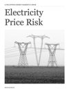 Electricity Price Risk