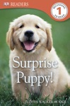 DK Readers L1 Surprise Puppy Enhanced Edition