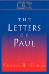 Interpreting Biblical Texts Series - The Letters Of Paul