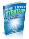 Website Traffic Strategy