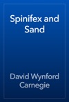 Spinifex And Sand