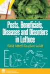 Pests Beneficials Diseases And Disorders In Lettuce
