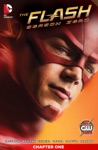 The Flash Season Zero 2014- 1