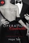 Operation Cinderella Entangled Indulgence