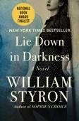 William Clark Styron - Lie Down in Darkness  artwork