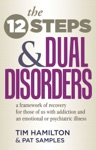 The Twelve Steps And Dual Disorders