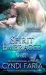 Spirit Embraced