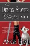 Accidental Demon Slayer