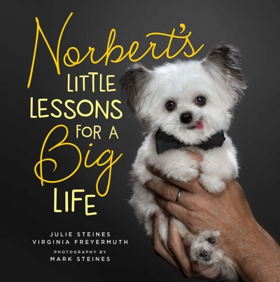 Norberts Little Lessons for a Big Life