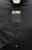 Marcin Wójcik - Celibat artwork