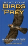 Identifying Birds Of Prey