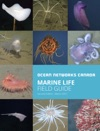 Marine Life Field Guide