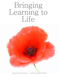 DOWNLOAD OF BRINGING LEARNING TO LIFE PDF EBOOK