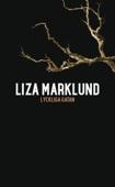 Liza Marklund - Lyckliga gatan bild