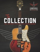 The Songbirds Guitar Museum - The Collection  artwork
