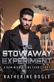 THE STOWAWAY EXPERIMENT