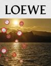 LOEWE Publication No11