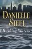 Danielle Steel - Rushing Waters  artwork