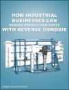 How Industrial Businesses Can Reduce Production Costs With Reverse Osmosis
