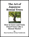 The Art Of Japanese Bonsai Trees
