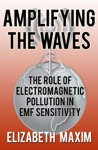 Amplifying The Waves The Role Of Electromagnetic Pollution In EMF Sensitivity