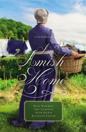 DOWNLOAD OF AN AMISH HOME PDF EBOOK
