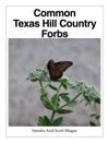 Common Texas Hill Country Forbs