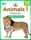 Animals 1  Mammals