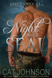 Night with a SEAL book summary